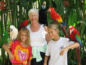 Bali Bird Park & Ubud Tour
