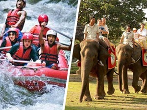 Rafting & Elephant Ride Tour