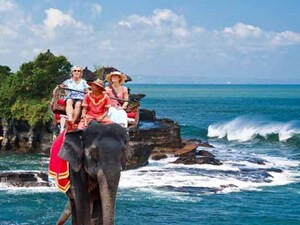 Elephant Ride & Tanah Lot Tour