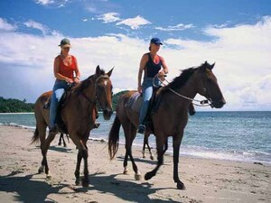 Horse Riding & Uluwatu Tour