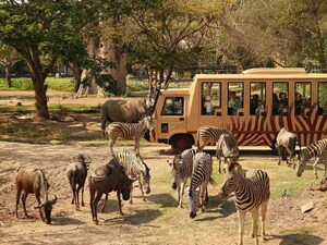 Safari Park and Ubud Tour